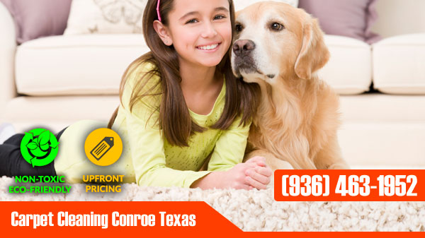 Carpet Cleaning Conroe Texas Banner
